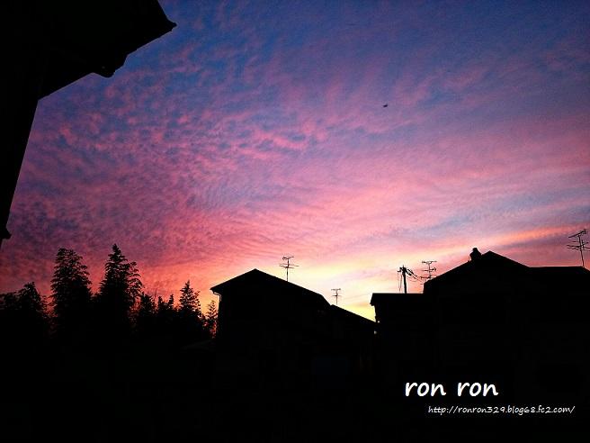 20141005photo5.jpg