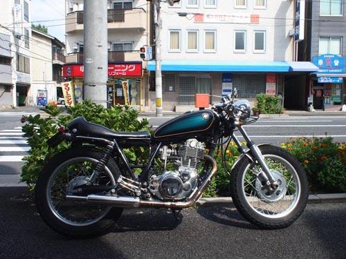 P8319400.jpg
