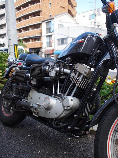 P9059656.jpg