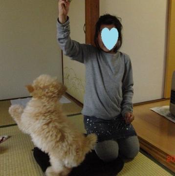 つづちゃん2
