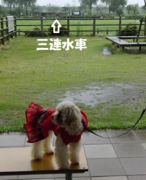 雨 ドライブ 4