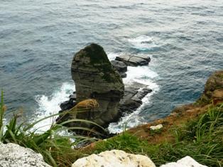 与那国:立神岩