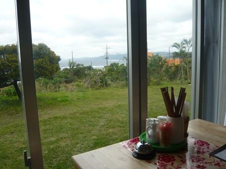 花風:窓からの景色