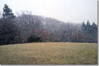 20140405_snow.jpg