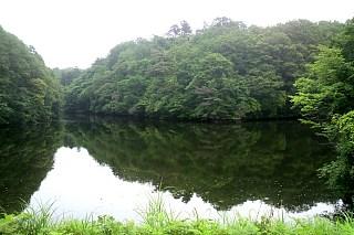 20140611_pond.jpg
