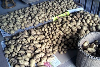 20140713_potato.jpg