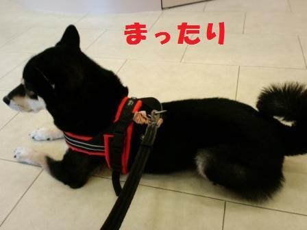 blog7957.jpg