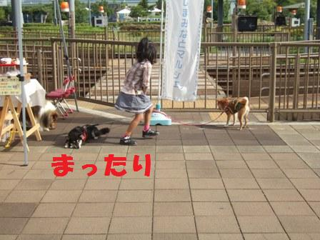 blog8018.jpg