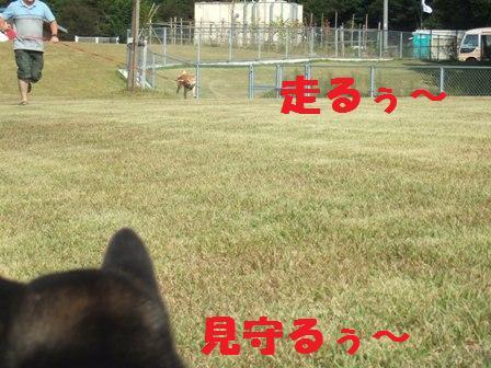 blog8041.jpg