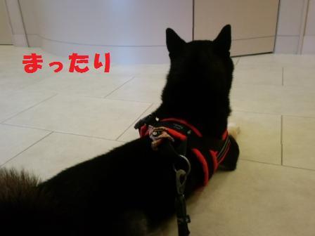 blog8084.jpg