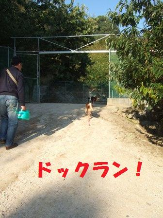 blog8180.jpg