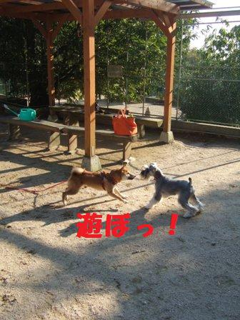 blog8181.jpg