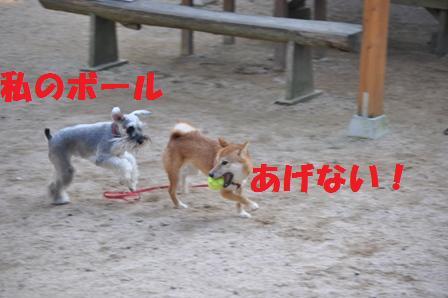 blog8194.jpg