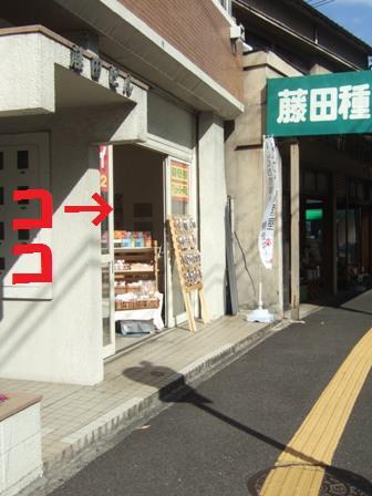 blog8209.jpg