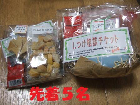 blog8211.jpg