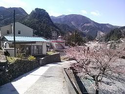 桜山染紡と