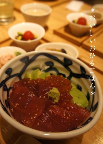 豆ちゃ (1)