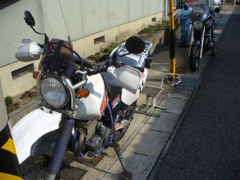 P1220064.jpg