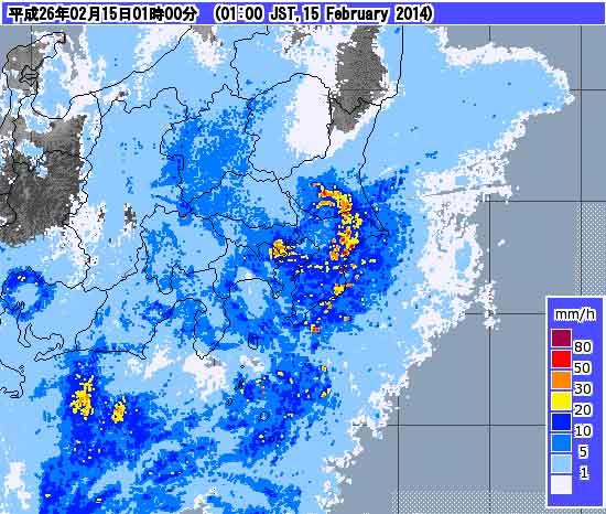 雪国東京のつるバラ (2)
