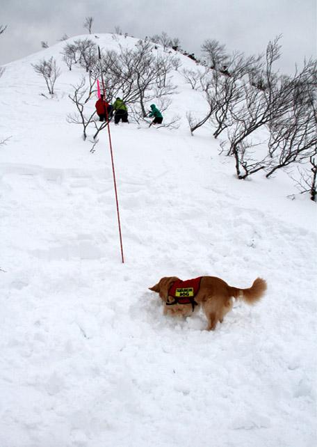 2014 関東雪崩(31)