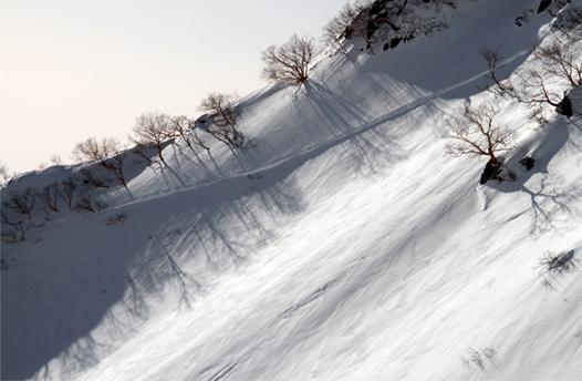 2014年 全国雪崩 (24)