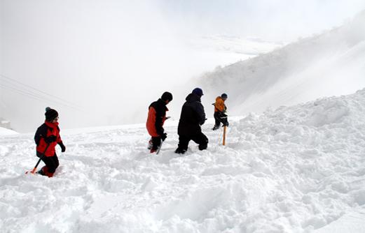 2014年 全国雪崩 (33)