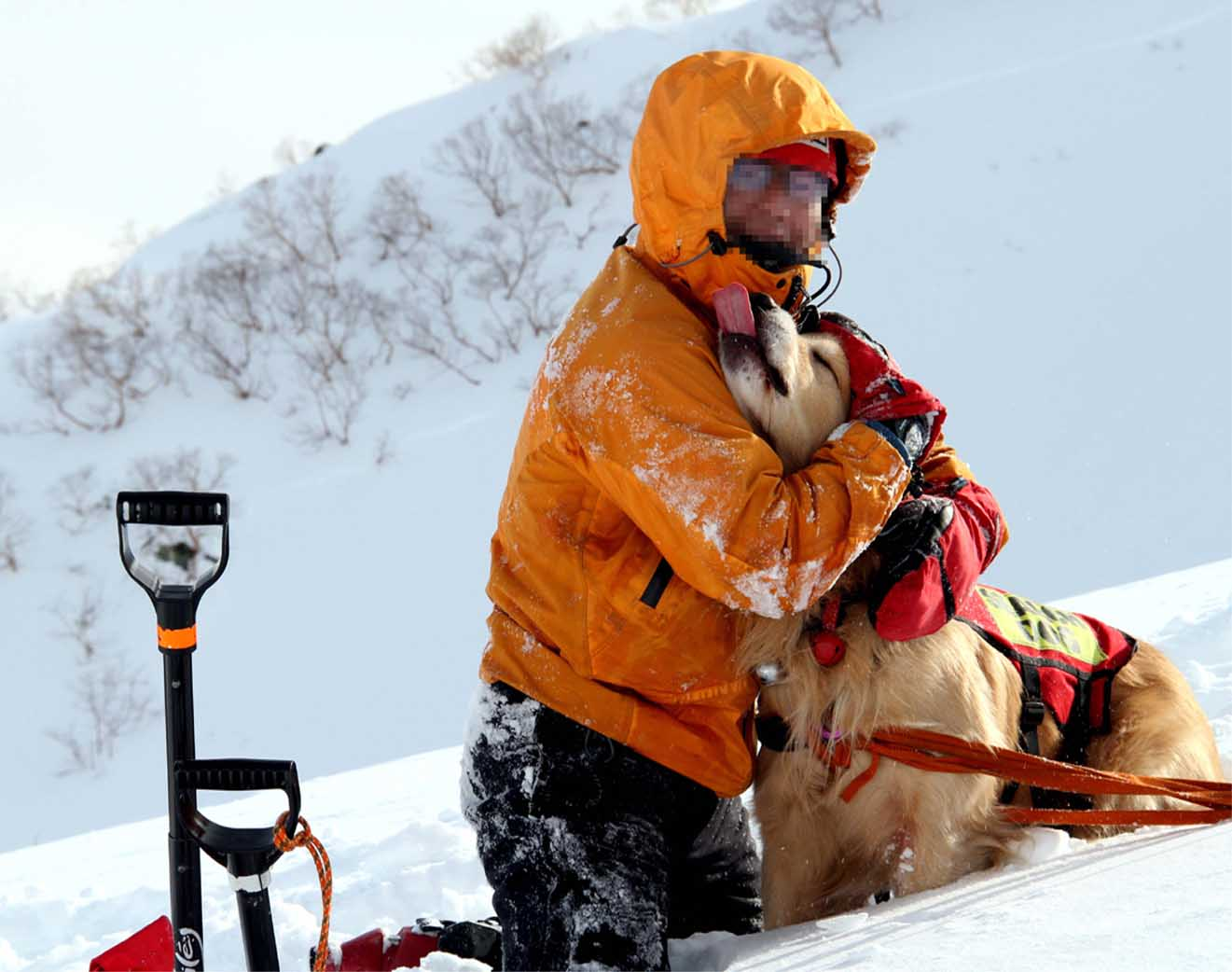 2014年 全国雪崩 (92)