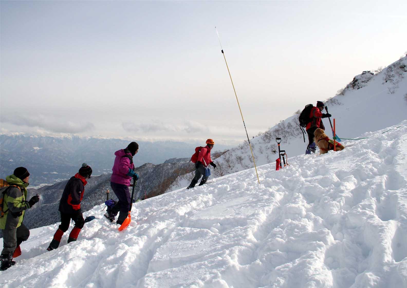 2014年 全国雪崩 (93)