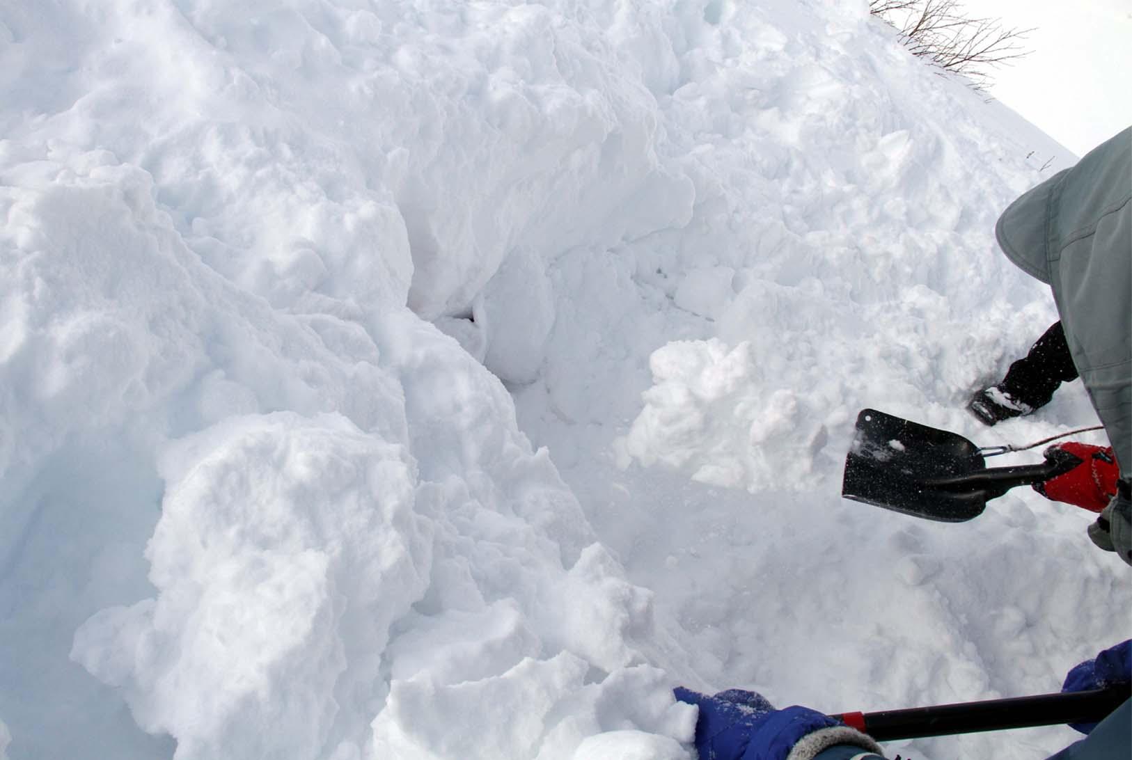 2014年 全国雪崩 (95)