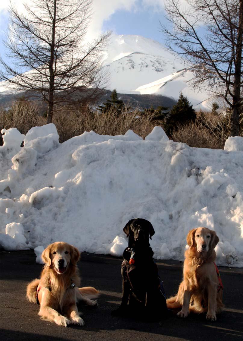 3月21日の富士山(3)