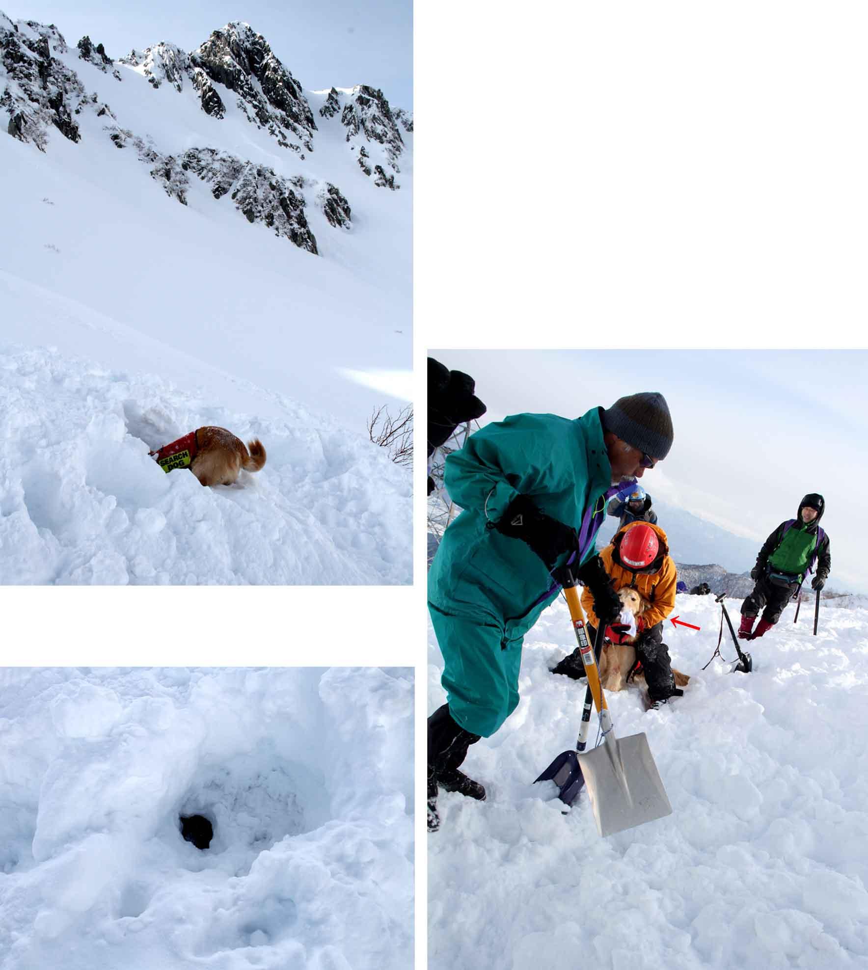 2014年 全国雪崩 (103)