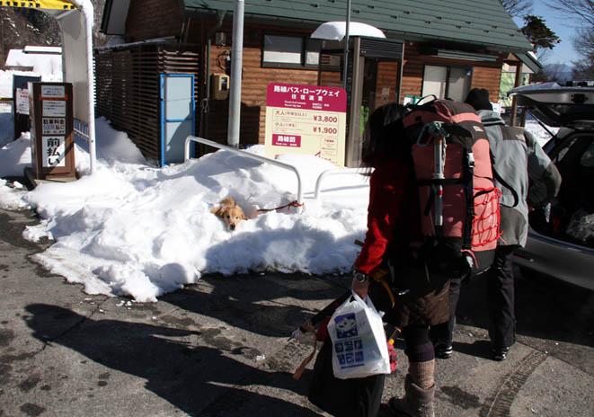 2014年 全国雪崩 (118)