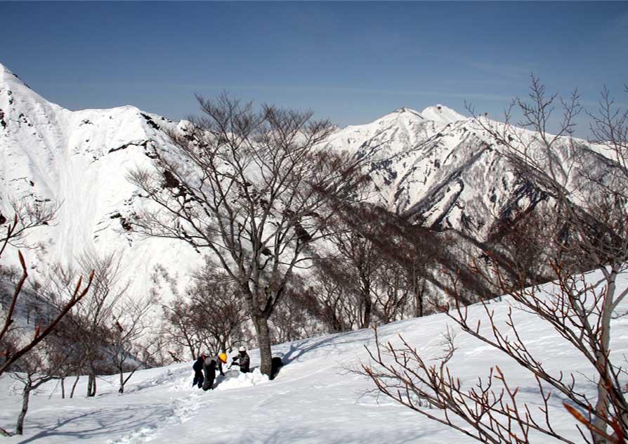 谷川岳雪中捜索訓練(31)