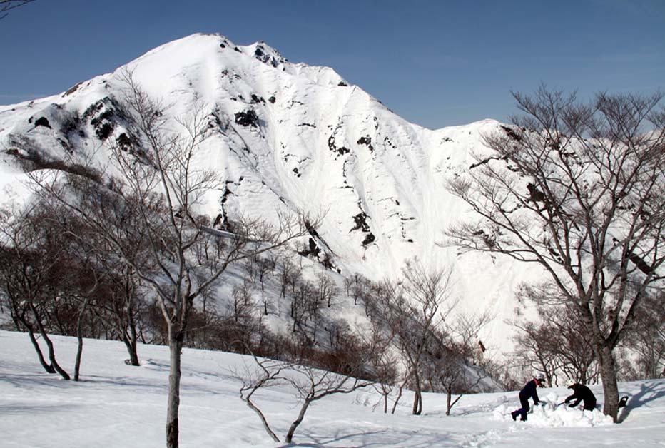 谷川岳雪中捜索訓練(32)