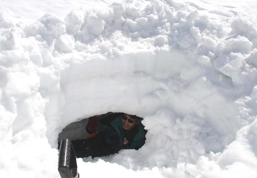 谷川岳雪中捜索訓練(37)