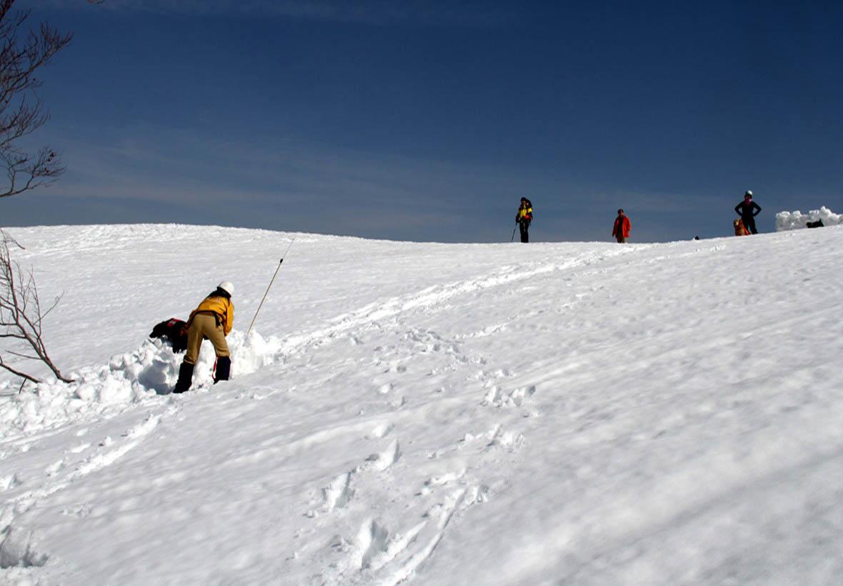 谷川岳雪中捜索訓練(43)