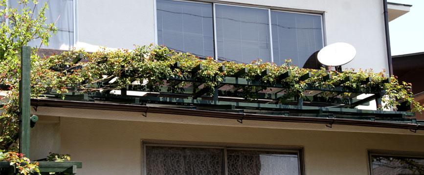 屋根の上のFジュランビル 0415(1)