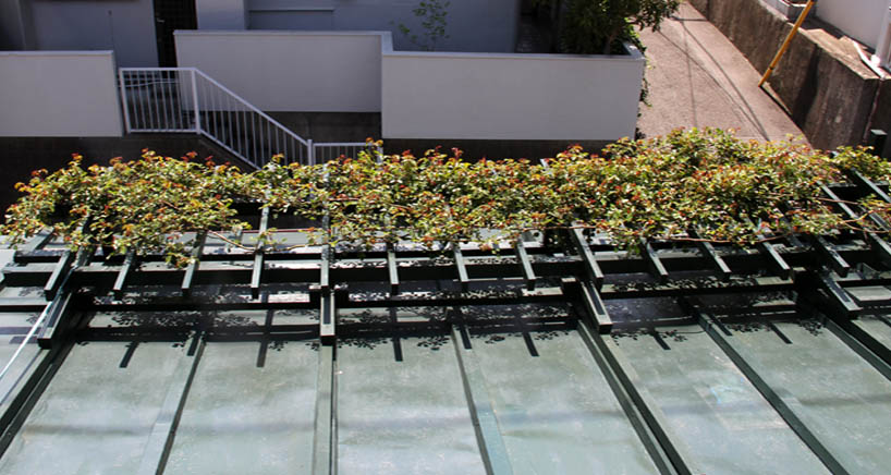 屋根の上のFジュランビル 0415(2)