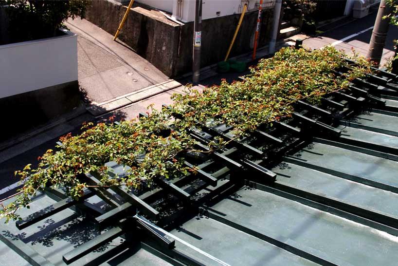 屋根の上のFジュランビル 0415(4)