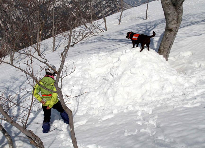 谷川岳雪中捜索訓練(68)