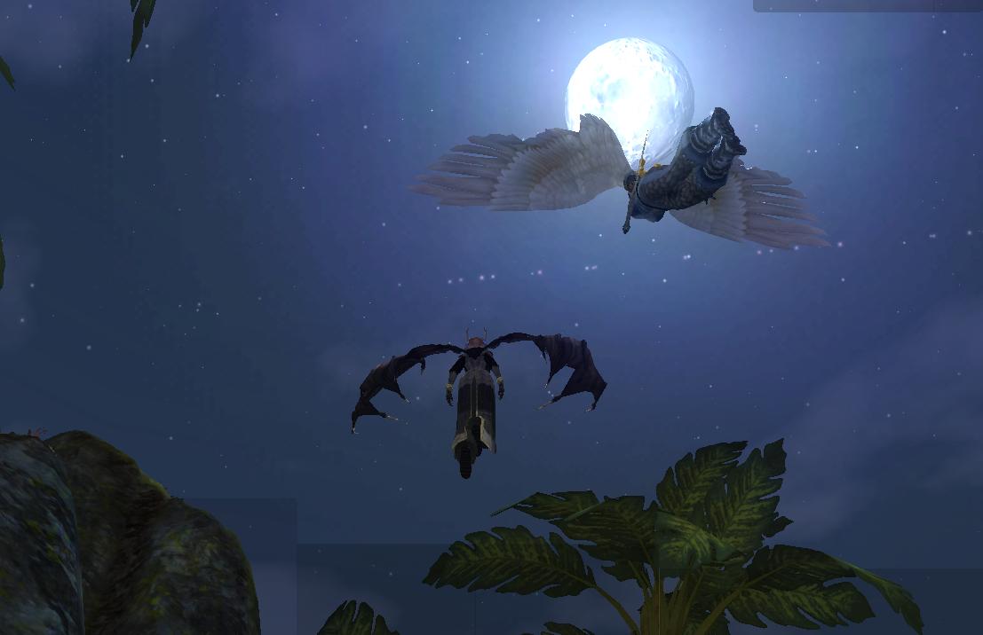 満月の夜1