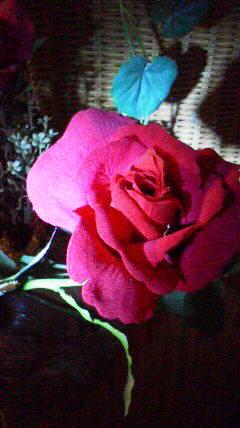 CAE3PH3M_2014102708511311c.jpg