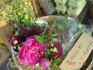 140426サンデーブーケさんの花