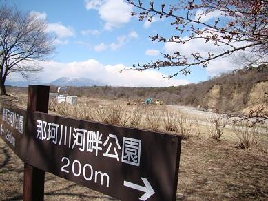 河畔公園案内板と桜