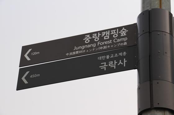 140223yama (4)