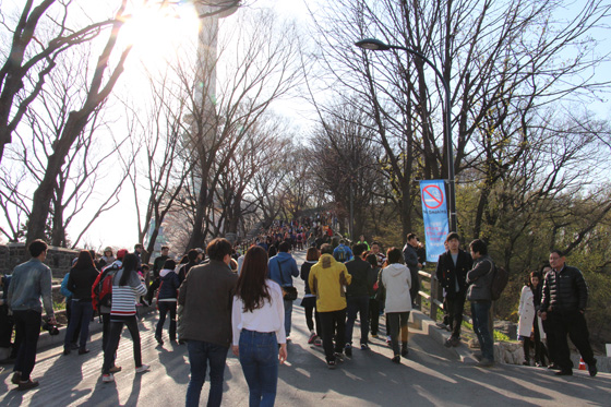 140406namsan (12)