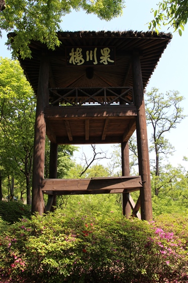 140505yama (10)