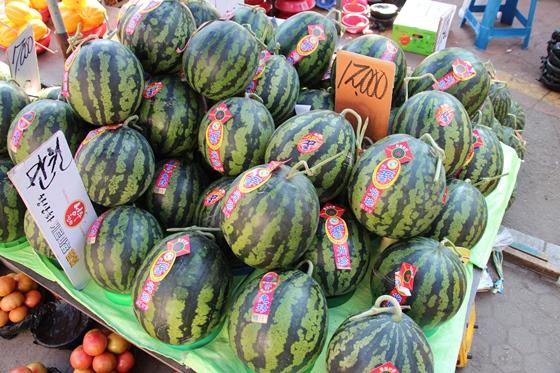 140517watermelon (2)
