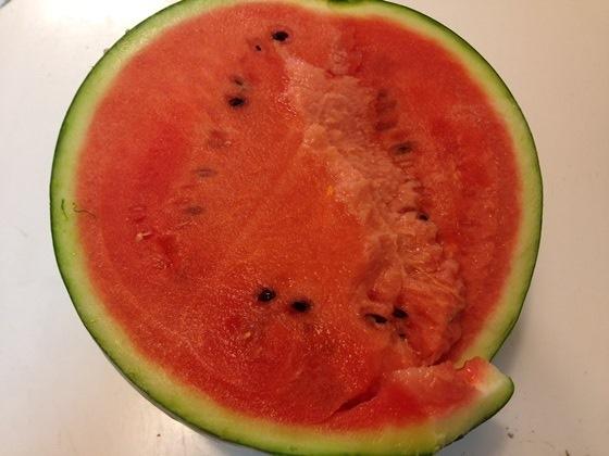 140517watermelon (1)