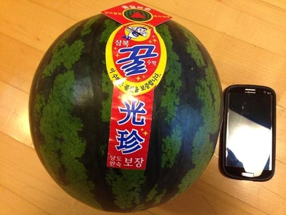 140517watermelon (3)